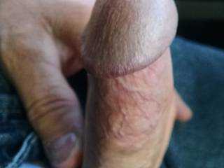 My cock got hard so I pulled it out wishing someone would come by and suck it.
