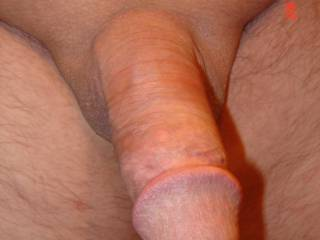 Showing off my shaved cock
