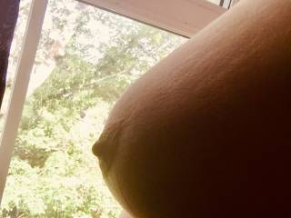 pet did not complete her task. pet must face her punishment and be exposed for 4 hours. Then she will have those beautiful tits cropped so hard.