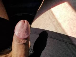 I took my cock out while driving, hoping the Mrs. would take the hint and go down on me.
