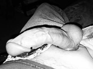 Hard throbbing cock in black and white