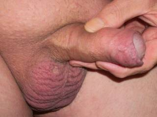 My favorite pass time: playing with my shaved cock and balls. Want to cum and join me?