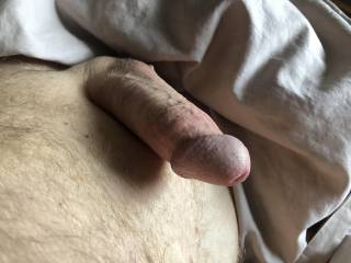 Stiff cock. I wonder if Zoigers are tired of looking at my cock.