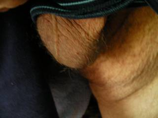 My balls fell out of my shorts swelling while looking at Pantiecocky and other Zoig friends.Hope it makes him and all horny.Please leave sexy comments.