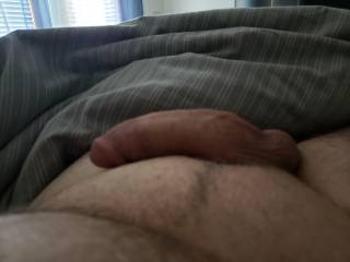 This morning wanting some pussy