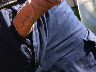 Got my cock out