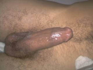 I am Bi-sexual [not gay] and I'd njoy strokeing and sucking you off.