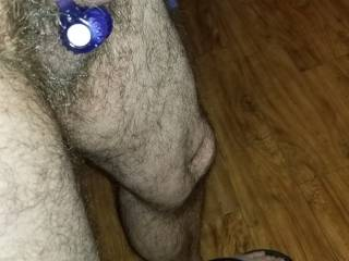 My hard cock with vibrating cock ring and glans ring