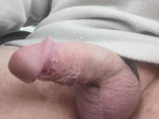 Freshly shaved and sporting the cock ring.