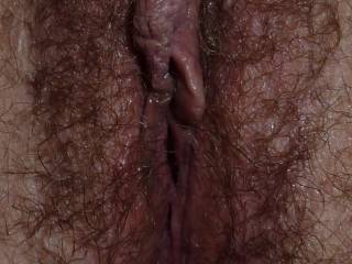 i'd like to lick your sexy hairy pussy