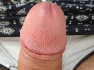 a pice of my dick for all beautiful womans