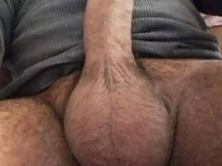 Latin Cock waiting to be licked and sucked..