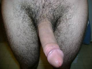 the perfect mansized cock and love all that hair too, keep it hairy stud!