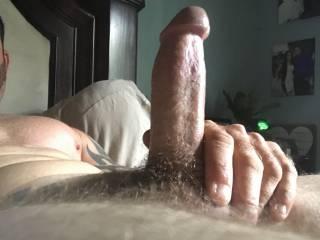 Hard cock ready to fuck