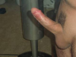 Side view of cock just trimmed.
