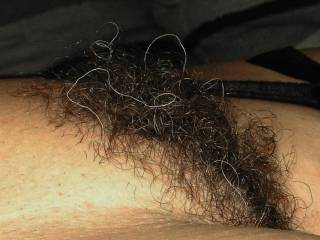 OMG OMG darlin thats the best sexy hairy bush i have EVER seen, damn thats soooooooo fucken hot, makes my dick so hard lookn at her, PLEASE never shave that beautiful pussy.... damn!!!!!!