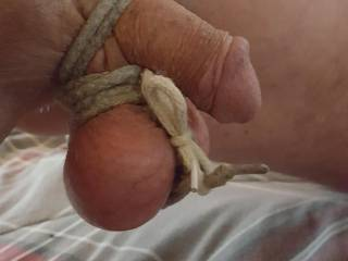 More self cock and ball bondage. Turns me on immensely