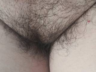 I will like to shave my pussy, but the guys keep asking me to keep it as it. HAIRY