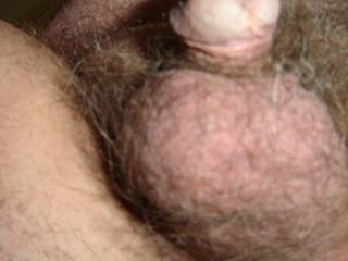 Hairy little chap Eh?