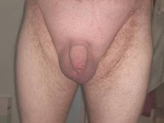 Who likes my small shaved uncut cock?