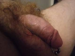 Photo of my close up, red pubed, ringed, pierced cock.