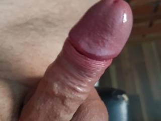 My first upload wearing an elastic band as cock ring. Took this shot while my wife was snoozing in the morning cause I woke up with a pretty rock hard erection. What would you do to me/with me?  Add me ;)