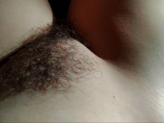 I am a fan of hairy pussies. Hairy pussy is the best!Simply stunning unkempt hairy bush.  Bad more women aren't allowing themselves to remain natural down there.Please comment.