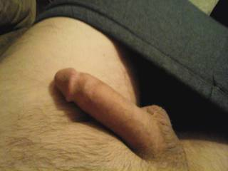 Chatting with zoig friends, getting nicely hard, Anyone like to play?