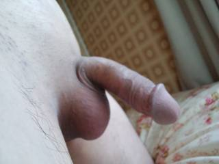 I want to lick & suck your tight balls!!!