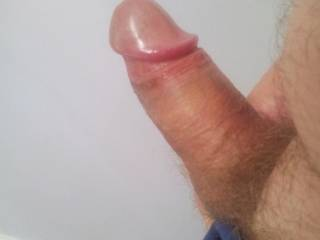 love to lick your hairy balls and then slow suck that sausage!! perfect lolly pop to suck the hell out of!!!