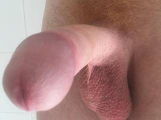 What do you think about my dick ?