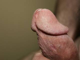 Some pre-cum dripping out of my swollen head!!! Time for the whole load!!! Anyone want it?!!!