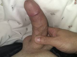 Shaved horny dick