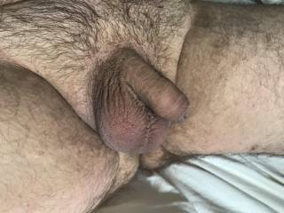Sunday Cleanup Hairy Cock