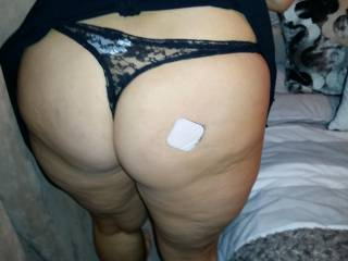 Any big cocks want to fuck my fat ass guys