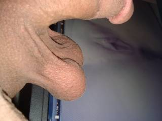 do u like to see ur sweet pussy with my hard cock and balls in pic ? send me ur pic in my mail
