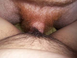 Sweet sexy red and black pubes mix for a fuck