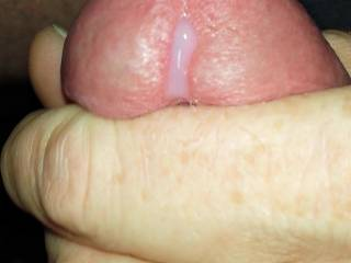 A little pre-cum while stroking my cock to give a lucky lady a cum tribute! Use my pre-cum as lube!