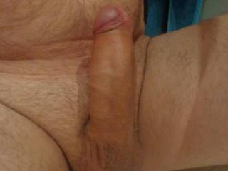 freshly trimmed cock and balls..very horny tonight so thought I would share with you all....any takers?