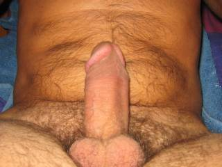 Looks perfect for sucking and fucking to me!