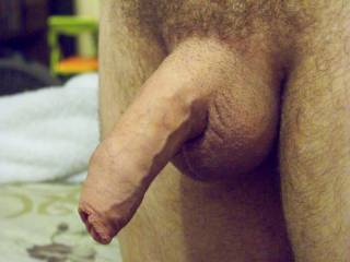 That is one hot and big uncut cock... would love to suck it