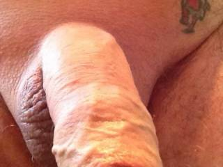 My lovely zoig friend KellyDC  asked me to shave my strip of hair above my cock, so here is result , do you like it better or not ?