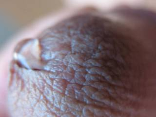 My cute little cock has a drop of precum that needs some help.  It\'s dripping, help him please!