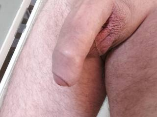 Just my soft cock waiting for a mouth...