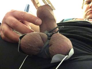 Cbt fetish tens unit foreskin play tied