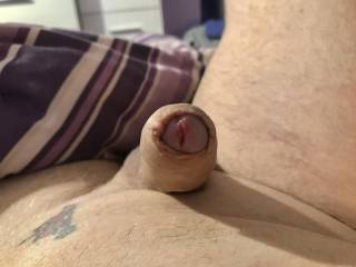 Id love my foreskin puled back  and then my cock made to cum
