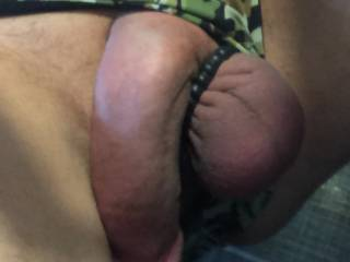 Cock hanging out of undies, so turned on trying not to pop into a huge typical erection so I can edge it more