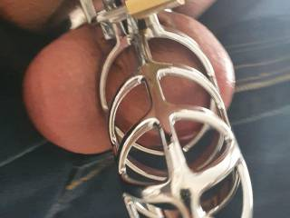 clitty dick is where it belongs to be in chasity