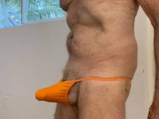 Do you think that maybe Mr. F needs a larger size undies?  From Mrs. Floridaman