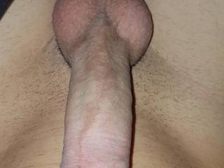 My cock stretches all the way to my belly button.. ladies.. who wants a large cock to suck on